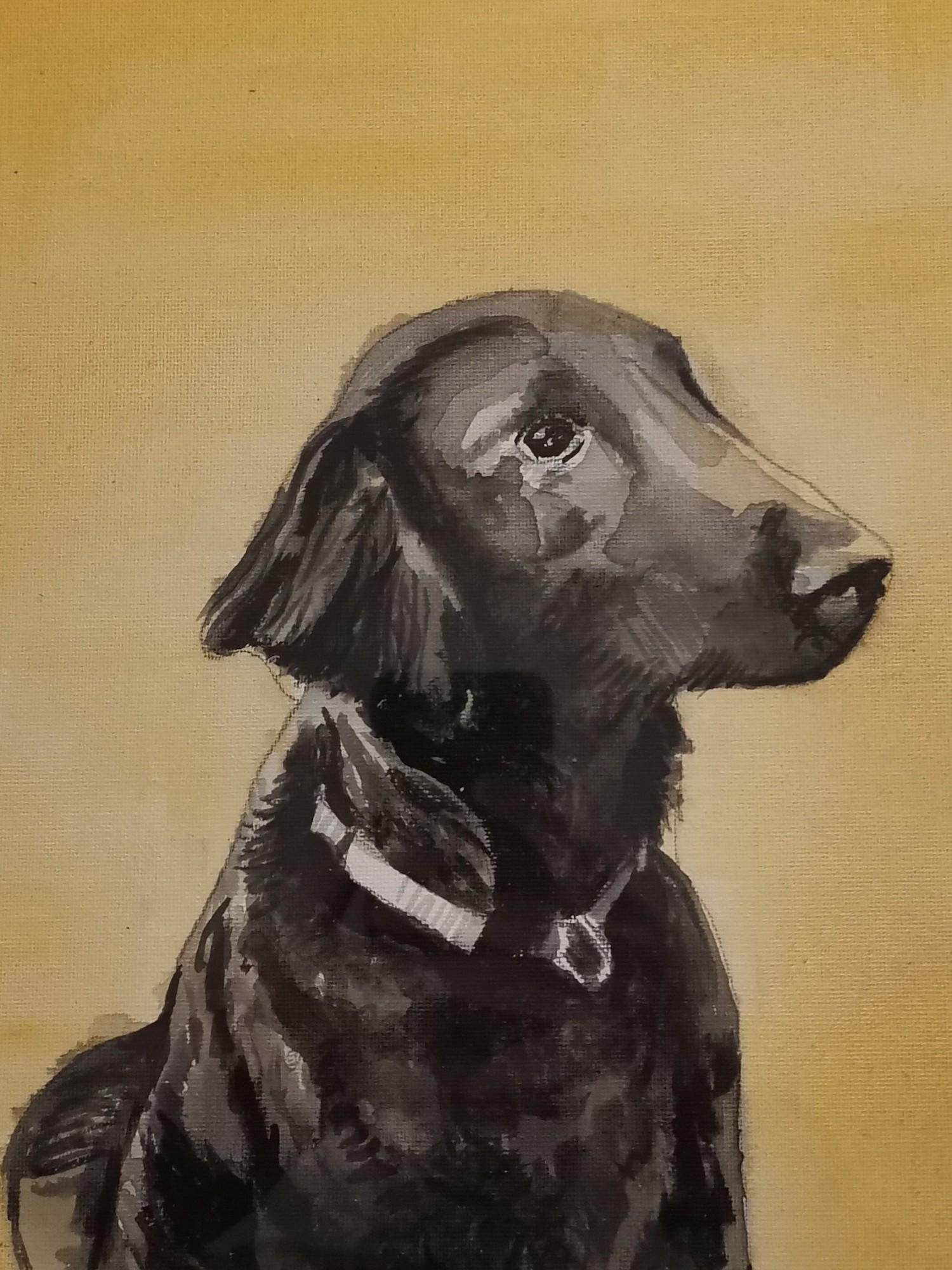 Pepsi Dog Portrait