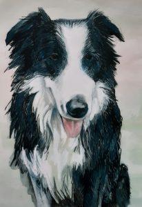 Portrait of dog Angus